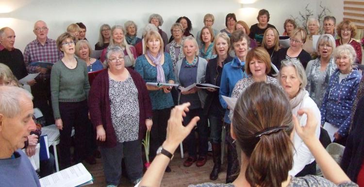 Dawn Chorus (2)